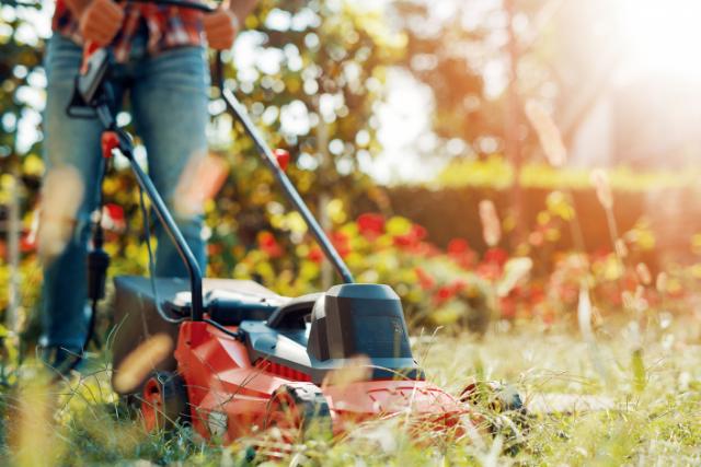כל היתרונות של מכסחת דשא נטענת