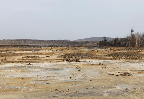 מתי קרקע נחשבת מזוהמת ומה ניתן לעשות במקרה כזה?